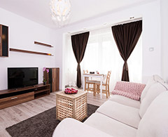 Lovely one bedroom rental, next to Calea Victoriei and Romanian Atheneum  - Bucharest